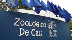 Colombia - Cali: Zoológico de Cali