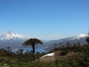 Parque Nacional de Conguillio - Sendero Sierra Nevada