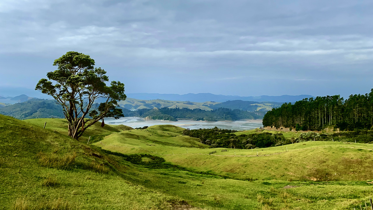 Million Dollar View Drive, Manaia, Waikato, Neuseeland (04.12.2019)