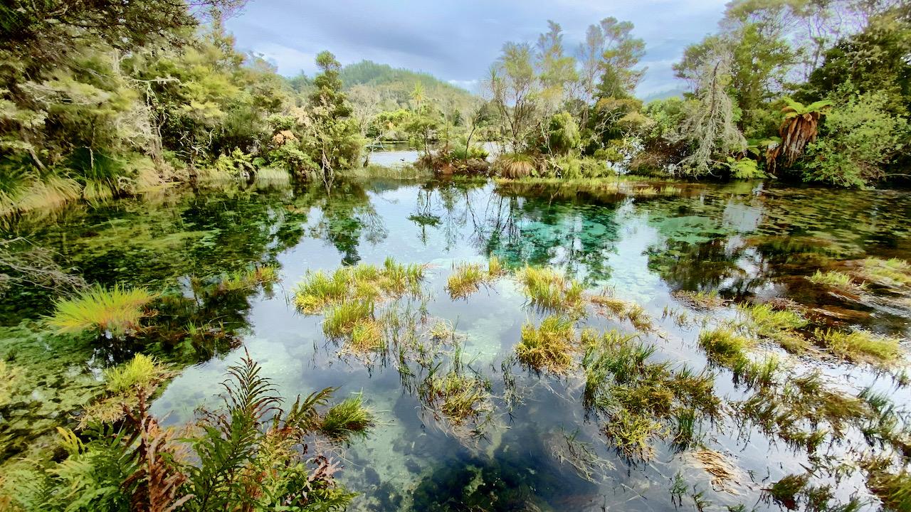 Mit das weltweit klarste Wasser bei Takaka, Tasman, Neuseeland (29.01.2020)